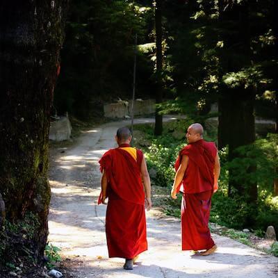 道を歩いている2人の仏僧の後ろ姿
