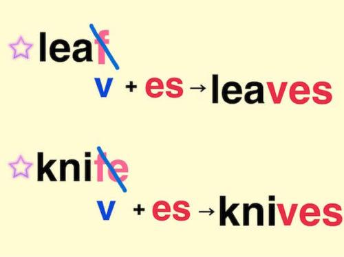 語尾がf,feの名詞を複数形にする時のルール